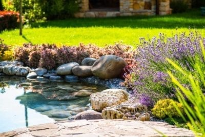 landscaping ideas for new homes in florida