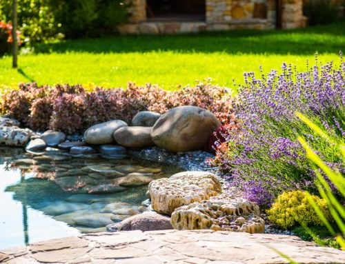 Landscaping Ideas to Increase Curb Appeal for New Homes
